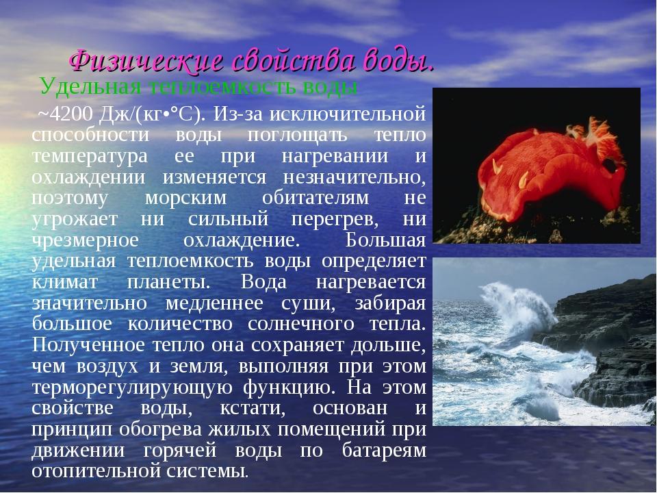 Физические свойства воды. Удельная теплоемкость воды ~4200 Дж/(кг•°С). Из-за...