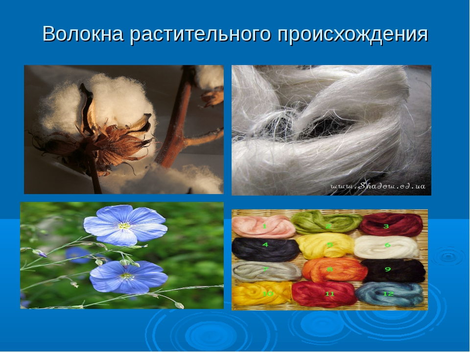 Волокна растительного происхождения