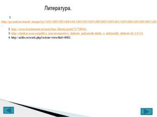 Литература. 1.http://go.mail.ru/search_images?q=%D1%80%D0%B8%D1%81%D1%83%D0