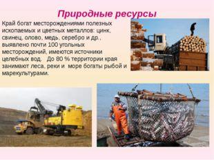 Край богат месторождениями полезных ископаемых и цветных металлов: цинк, свин
