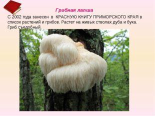 С 2002 года занесен в КРАСНУЮ КНИГУ ПРИМОРСКОГО КРАЯ в список растений и гриб