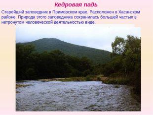 Кедровая падь Старейший заповедник в Приморском крае. Расположен в Хасанском