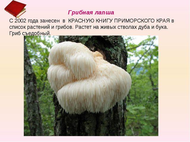С 2002 года занесен в КРАСНУЮ КНИГУ ПРИМОРСКОГО КРАЯ в список растений и гриб...