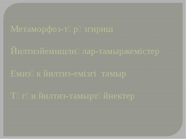 Метаморфоз-түрөзгириш Йилтизйемишлиқлар-тамыржемістер Емизәк йилтиз-емізгі та...