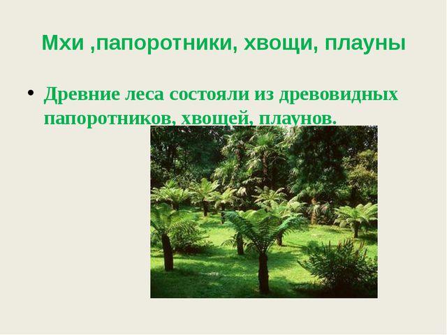 Мхи ,папоротники, хвощи, плауны Древние леса состояли из древовидных папоротн...