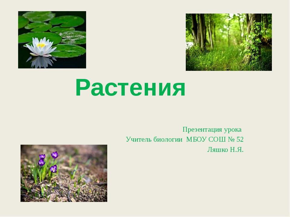 Презентация урока Учитель биологии МБОУ СОШ № 52 Ляшко Н.Я. Растения натали: