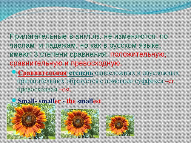Прилагательные в англ.яз. не изменяются по числам и падежам, но как в русском...