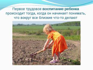 Первое трудовое воспитание ребенка происходит тогда, когда он начинает понима