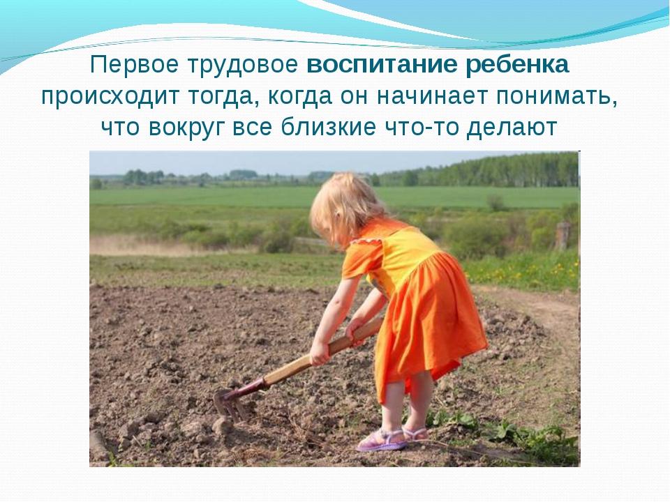 Первое трудовое воспитание ребенка происходит тогда, когда он начинает понима...