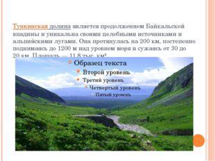Тункинская долинаявляется продолжением Байкальской впадины и уникальна своим