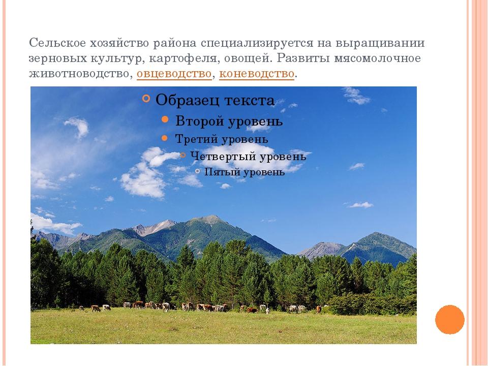 Сельское хозяйство района специализируется на выращивании зерновых культур, к...