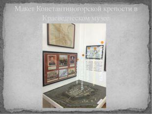 Макет Константиногорской крепости в Краеведческом музее