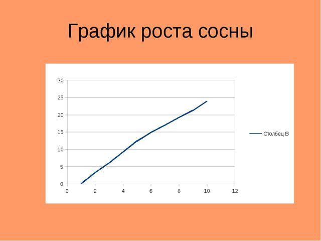 График роста сосны