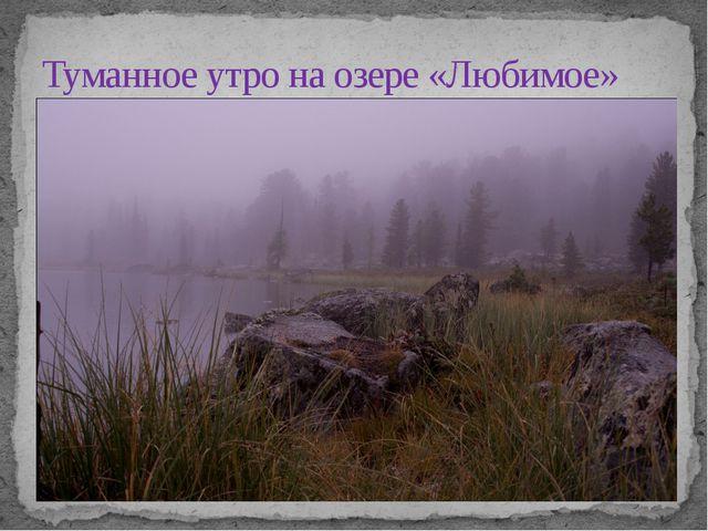 Туманное утро на озере «Любимое»
