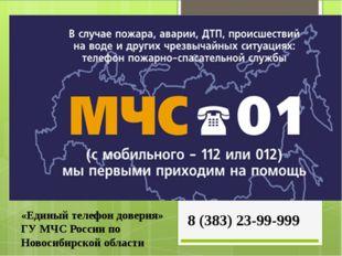 «Единый телефон доверия» ГУ МЧС России по Новосибирской области 8 (383) 23-99