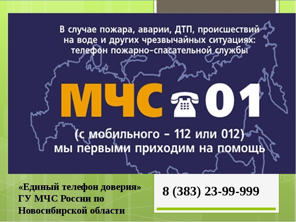«Единый телефон доверия» ГУ МЧС России по Новосибирской области 8 (383) 23-99...