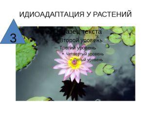 ИДИОАДАПТАЦИЯ У РАСТЕНИЙ 3