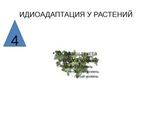 ИДИОАДАПТАЦИЯ У РАСТЕНИЙ 4