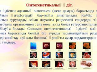 Онтогенетикалық әдіс. Бұл әдіспен адамның онтогенезі (жеке дамуы) барысында