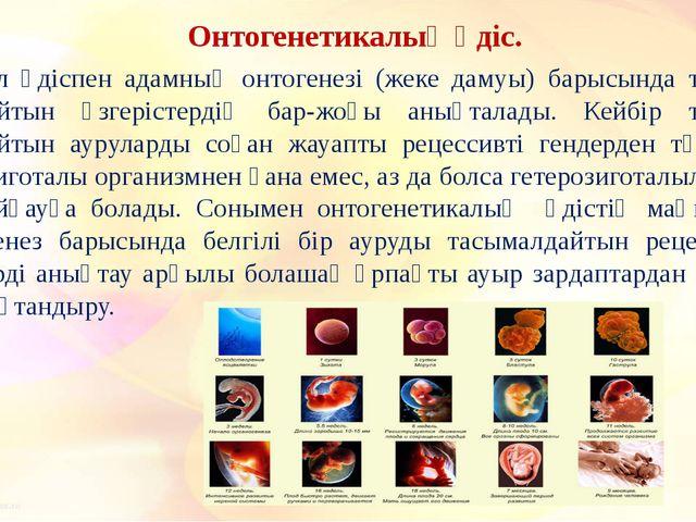 Онтогенетикалық әдіс. Бұл әдіспен адамның онтогенезі (жеке дамуы) барысында...