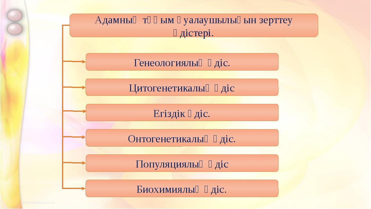 Адамның тұқым қуалаушылығын зерттеу әдістері. Генеологиялық әдіс. Цитогенетик...
