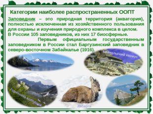 Категории наиболее распространенных ООПТ Заповедник – это природная территори