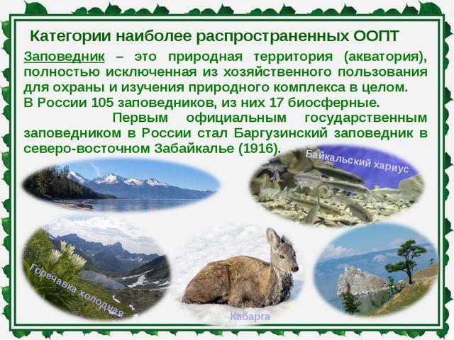 Категории наиболее распространенных ООПТ Заповедник – это природная территори...
