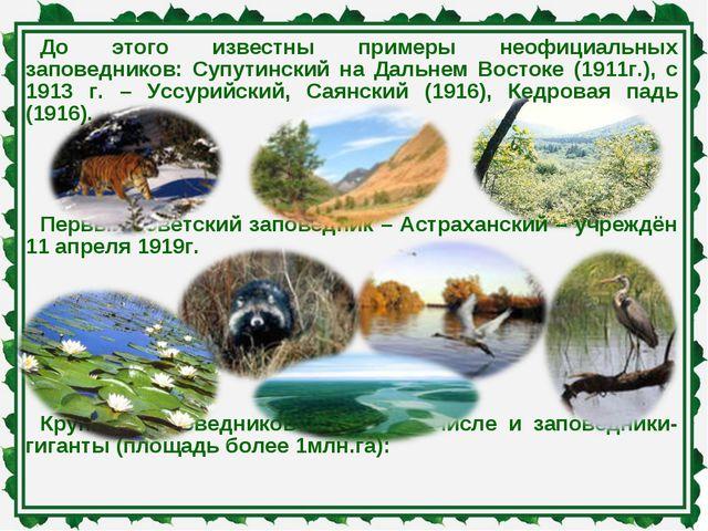 До этого известны примеры неофициальных заповедников: Супутинский на Дальнем...