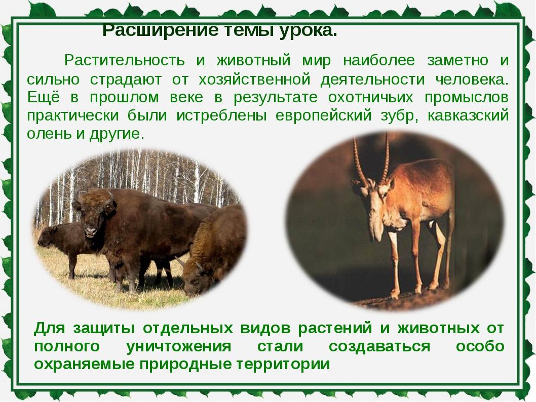 Расширение темы урока. Растительность и животный мир наиболее заметно и сильн...