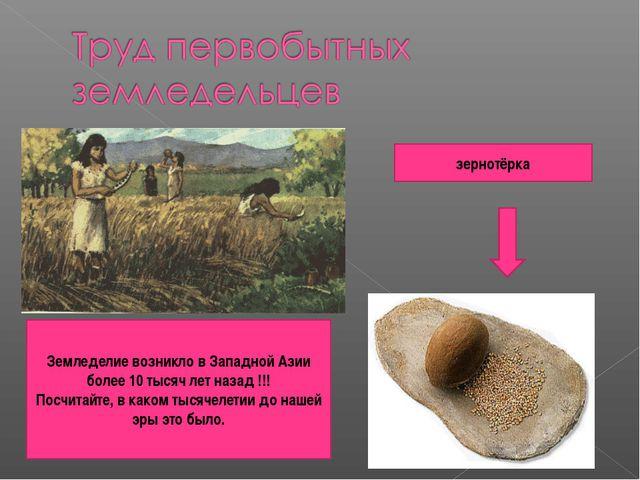 зернотёрка Земледелие возникло в Западной Азии более 10 тысяч лет назад !!! П...