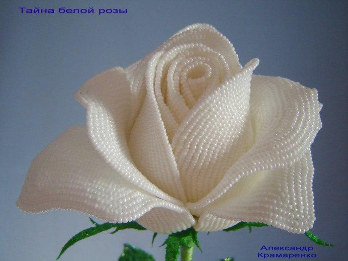 http://img1.liveinternet.ru/images/attach/c/5/87/369/87369649_DSC00014_2.jpg