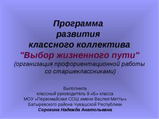 """Программа развития классного коллектива """"Выбор жизненного пути"""" (организация"""