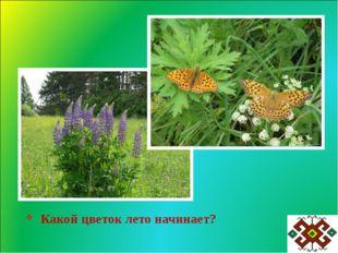 Какой цветок лето начинает?