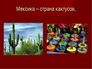 Мексика – страна кактусов,