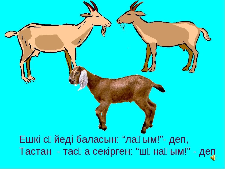 """Ешкі сүйеді баласын: """"лағым!""""- деп, Тастан - тасқа секірген: """"шұнағым!"""" - деп"""