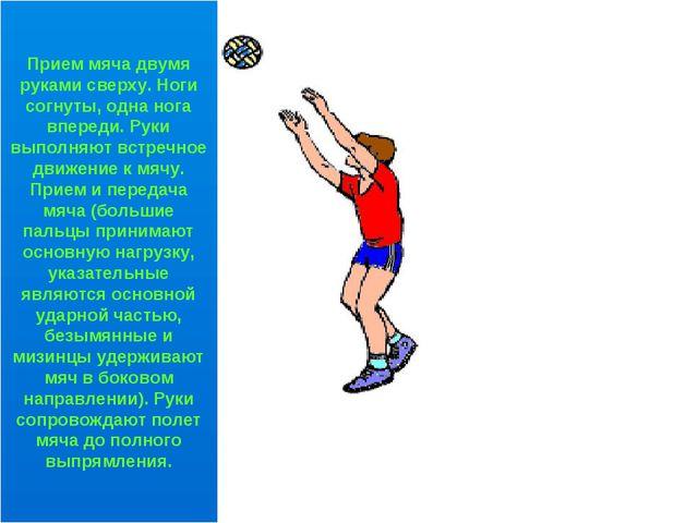 Прием мяча двумя руками сверху. Ноги согнуты, одна нога впереди. Руки выполня...