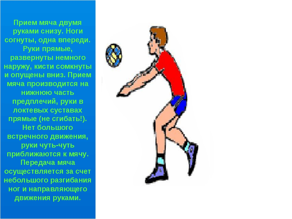 Прием мяча двумя руками снизу. Ноги согнуты, одна впереди. Руки прямые, разве...