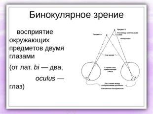 Бинокулярное зрение восприятие окружающих предметов двумя глазами (от лат.bi