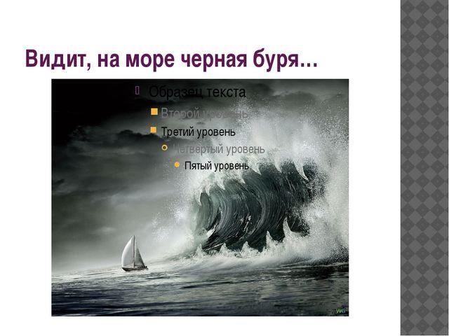 Видит, на море черная буря…