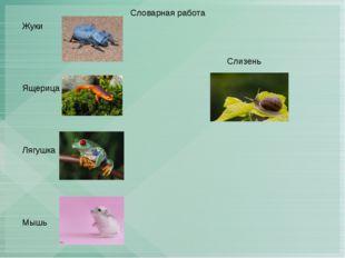 Словарная работа Жуки Ящерица Лягушка Мышь Слизень