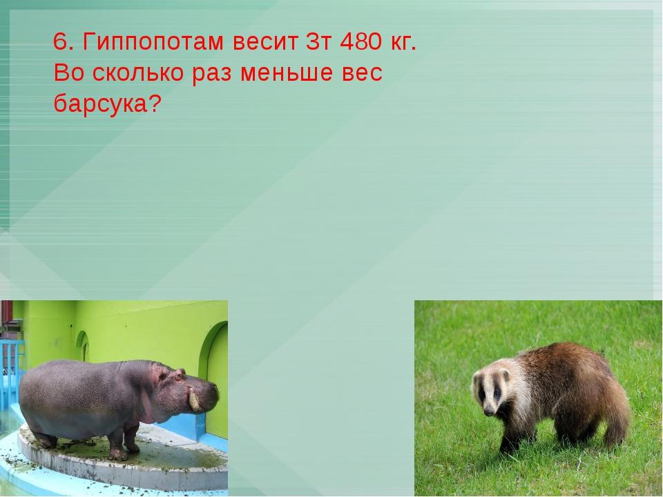 6. Гиппопотам весит 3т 480 кг. Во сколько раз меньше вес барсука?