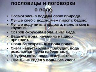 пословицы и поговорки о воде. Посмотрись в воду на свою природу. Лучше хлеб с