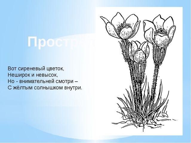 Вот сиреневый цветок, Неширок и невысок, Но - внимательней смотри – С жёлтым...