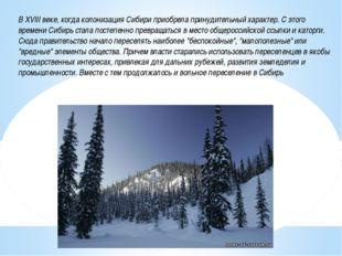 В XVIII веке, когда колонизация Сибири приобрела принудительный характер. С э
