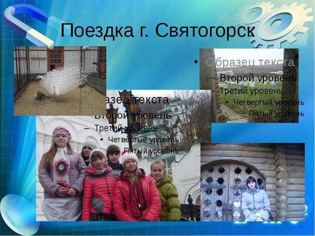 Поездка г. Святогорск