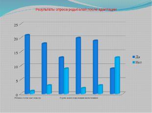 Результаты опроса родителей после адаптации
