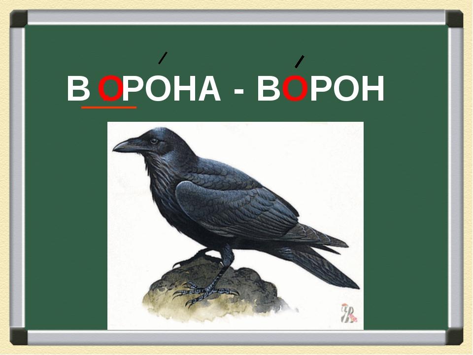 В . РОНА - О ВОРОН