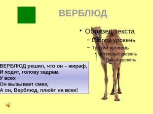 ВЕРБЛЮД ВЕРБЛЮД решил, что он – жираф, И ходит, голову задрав. У всех Он вызы