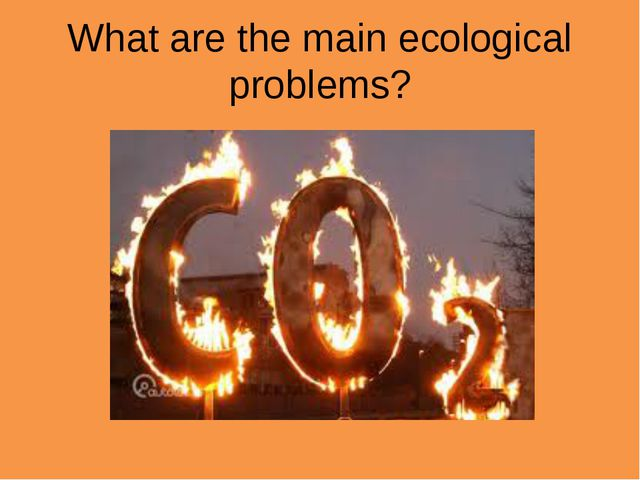 What are the main ecological problems?