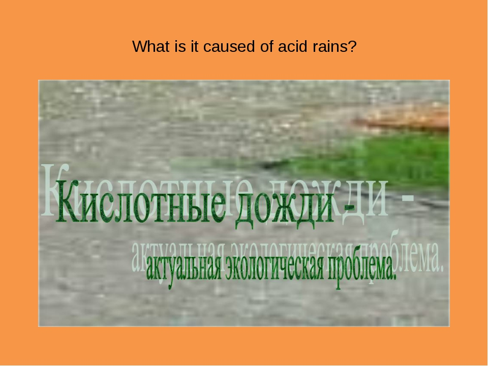 What is it caused of acid rains?